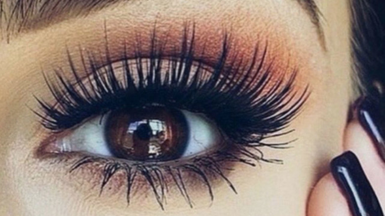 How To Maintain Your Eyelash Extensions Kg Salon